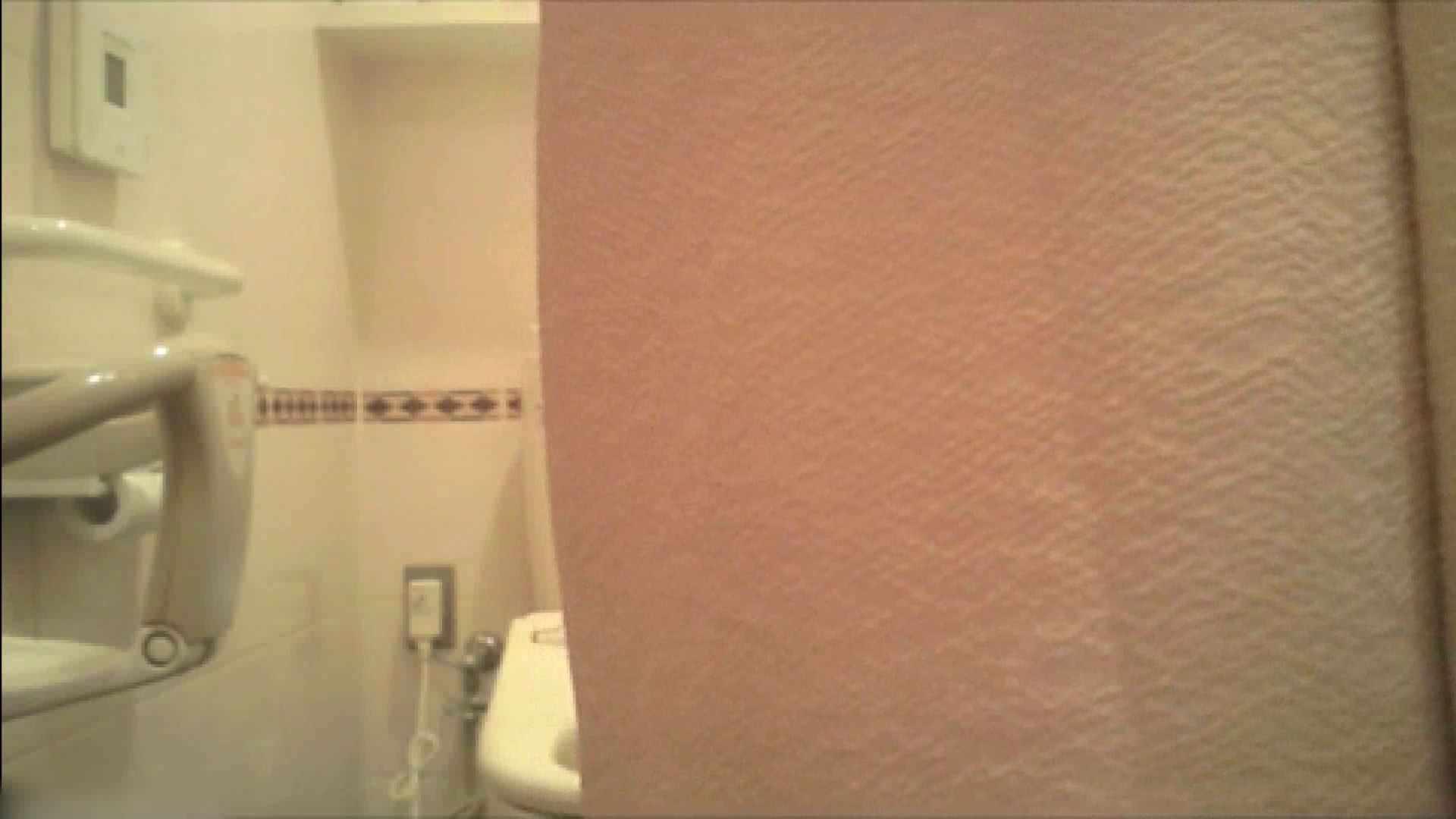 実録!!綺麗なお姉さんのトイレ事情・・・。vol.18 OL  68枚 51