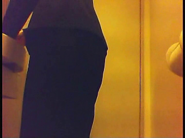 漏洩厳禁!!某王手保険会社のセールスレディーの洋式洗面所!!Vol.3 排泄  109枚 62