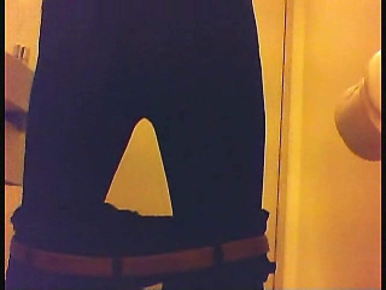 漏洩厳禁!!某王手保険会社のセールスレディーの洋式洗面所!!Vol.3 排泄  109枚 74