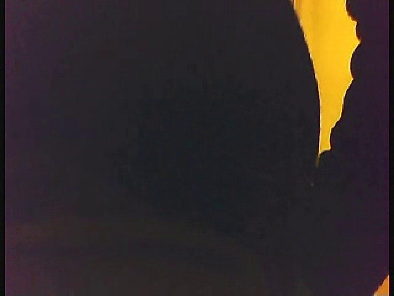 漏洩厳禁!!某王手保険会社のセールスレディーの洋式洗面所!!Vol.3 排泄  109枚 101
