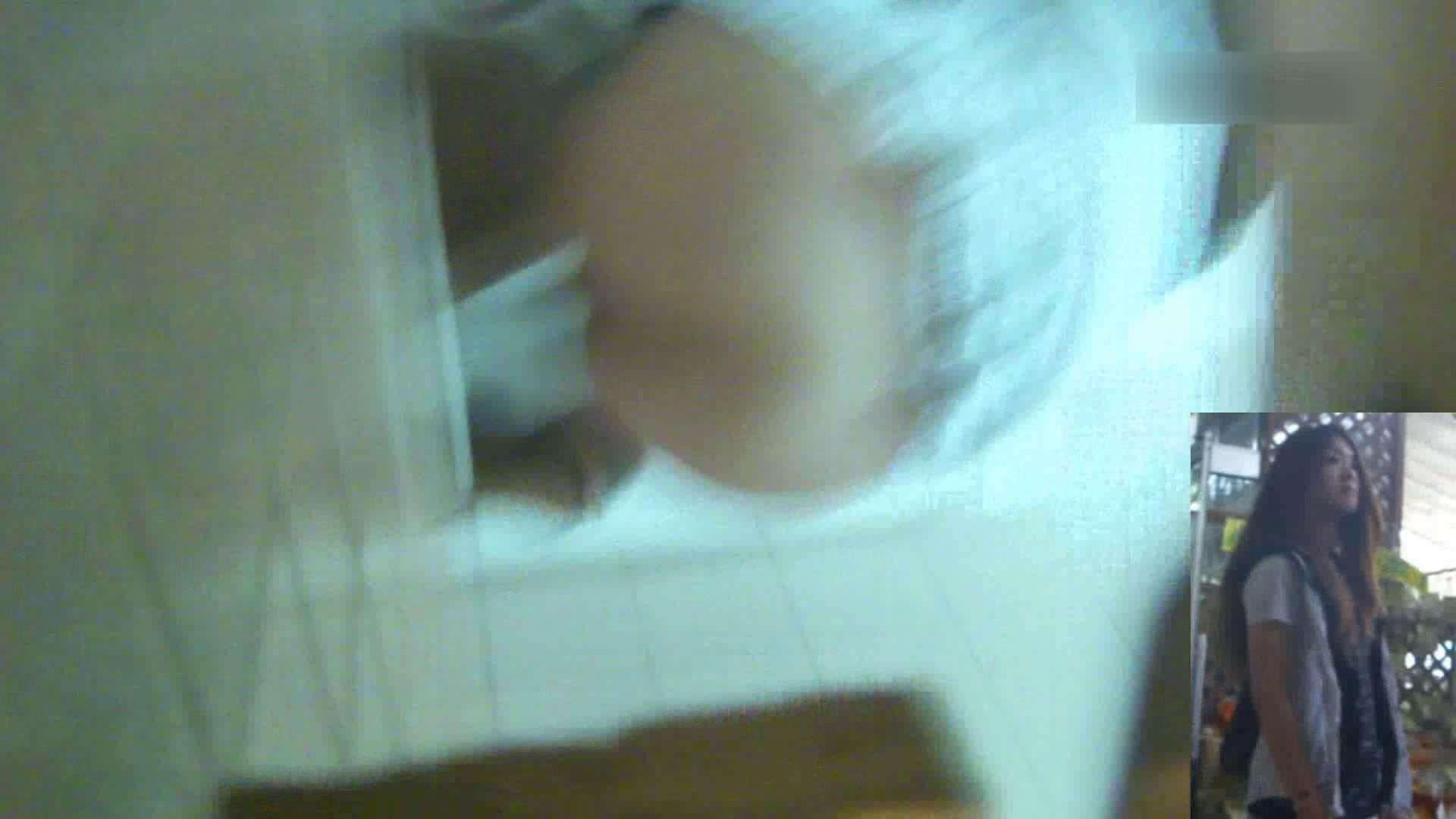 お姉さんの恥便所盗撮! Vol.7 便所  102枚 90